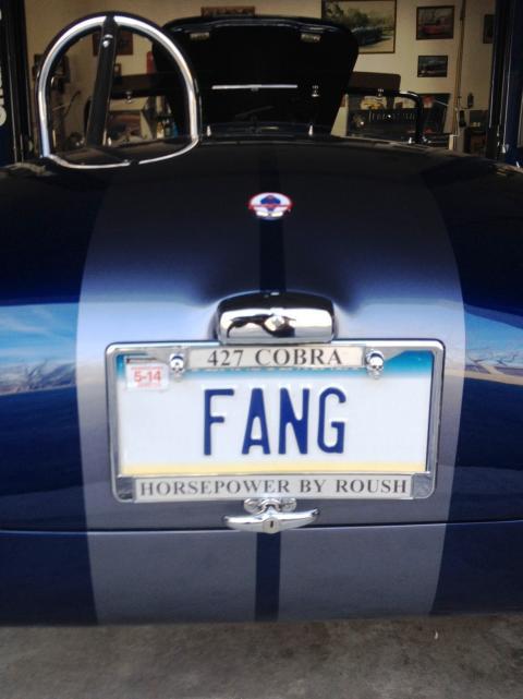 Name:  Fang 2.jpg Views: 587 Size:  34.8 KB