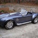 TN Shelby Cobra