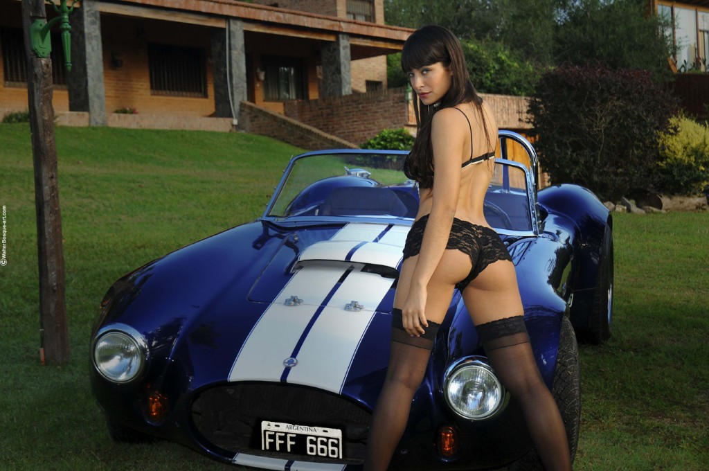 16 muscle car girls shelby cobra   club cobra photo gallery