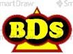 BDS_logo_5