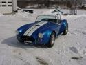 16448blue_cobra_in_the_snow.jpg