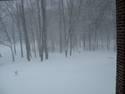1663605-winter-1.JPG