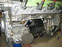 Cobra_engine_0021.JPG