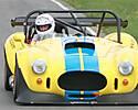 DRB_Race_Cobra_Small_.jpg