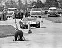 GT40_Sebring_1965.jpg