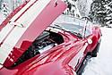 Snow_Snake_1.jpg