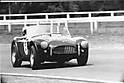 r_thorpe_warwick_farm_ac_cobra_1965_Small_.jpg