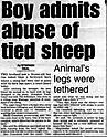 sheep-story.jpg