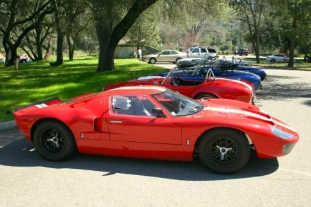 NorCal_Cobra_Group_Picnic_2009_005