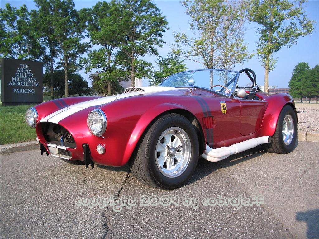 10170Cobra_am_Large_